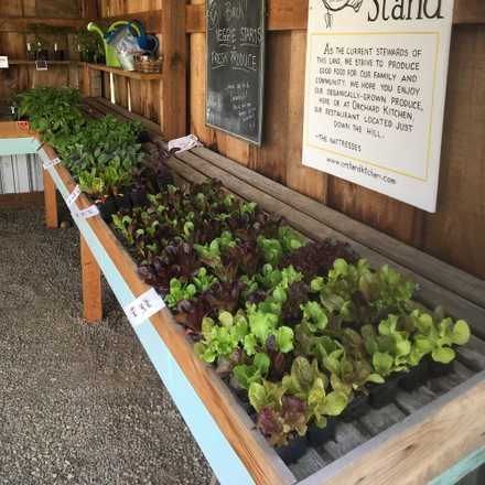 Orchard Kitchen Farm Stand